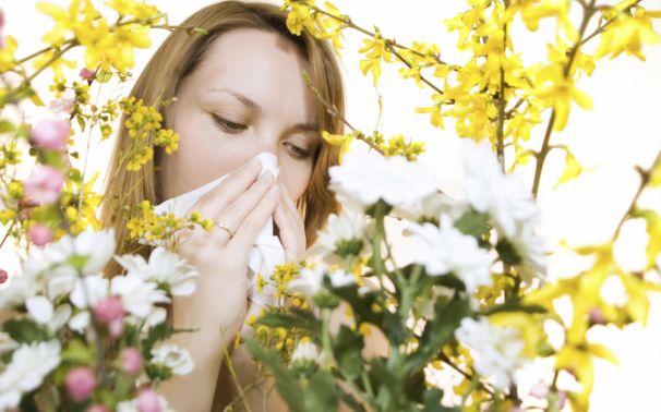 Alergias en Primavera Síntomas y Causas