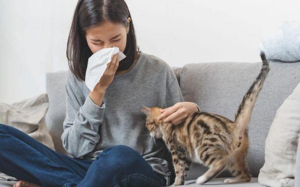 Alergenos del hogar