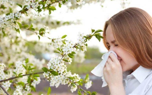 Alergia al polen y sus diferencias con Covid-19